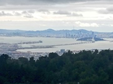 The San Francisco-Oakland Bay Bridge from Vollmer Peak